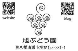 20120104_2113