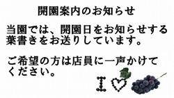20100915_0606